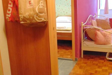 Zadar, Poluotok - dva jednosobna stana, 49 m2