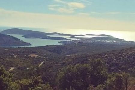 Rogoznica, okolica - zemljište s pogledom na more, 12400 m2